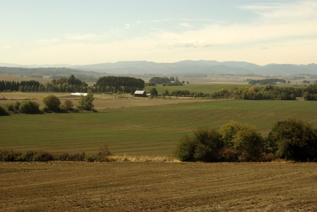 Fall view of the Willamette Valley, in Northern Polk County, Oregon, near Bethel